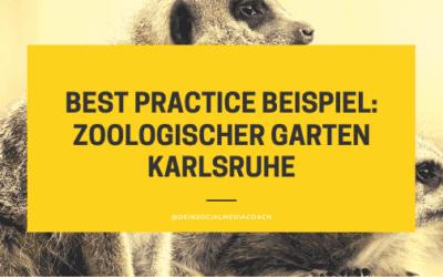 Social Media Marketing Karlsruhe: So geht es richtig: Zoologischer Garten Karlsruhe