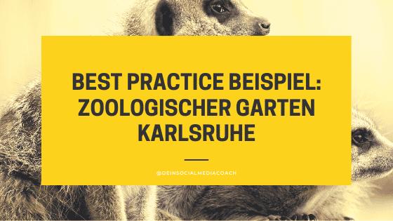 Best Practice Social Media Marketing: Zoologischer Garten Karlsruhe